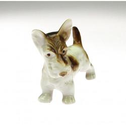 Porcelain terrier dog