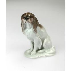 Porcelain dog - Rosenthal