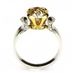 "Zlatý prsten s ""Nature..."