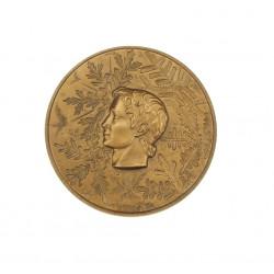 Pamětní medaile - zimní OH...