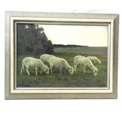 V.H. Popelka - Ovce v soumraku