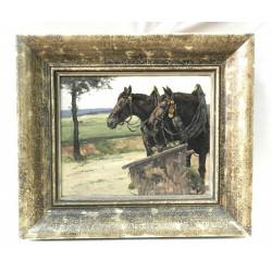 V.H. Popelka - Horse team