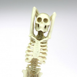 Soška kostlivce