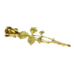 Zlatá brož - růže
